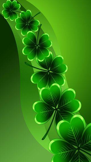 Обои на телефон 4 leaf clover, shamrocks, st paddys day, день, листья, ирландские, клевер