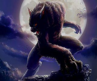 Обои на телефон зло, темные, рисунок, животные, волк, безумные, cruel