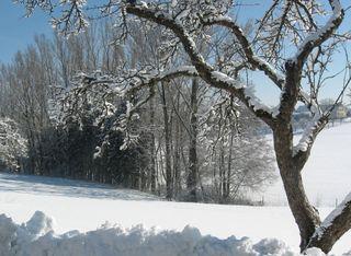 Обои на телефон экран, стиль, снег, рождество, планшет, зима, дом, деревья, winter-screen-tablet