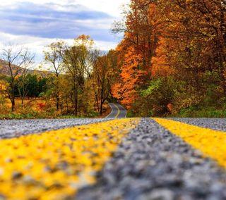 Обои на телефон цветные, природа, дорога, вид