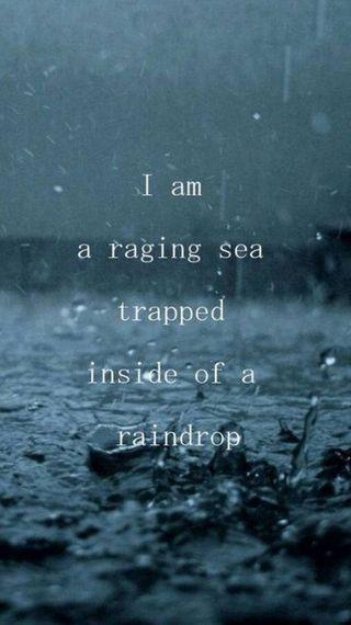 Обои на телефон цитата, море, любовь, дождь, ranging, raging sea, love