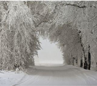 Обои на телефон снег, зима, природа, пейзаж