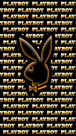 Обои на телефон кролики, золотые, rabbit gold