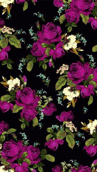 Обои на телефон цветочные, шаблон, фиолетовые, розы, принт, rose pattern