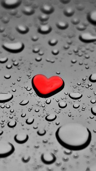 Обои на телефон мокрые, сердце, одинокий, любовь, wet heart, solitaire, love