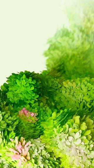 Обои на телефон цветы, технология, телефон, самсунг, мобильный, листья, зеленые, галактика, samsung, s20, hd, galaxy