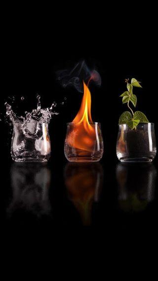 Обои на телефон растения, напиток, огонь, cups