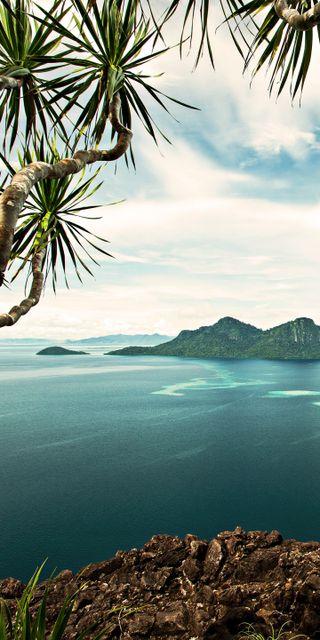 Обои на телефон пальмы, природа, пейзаж, озеро, горы