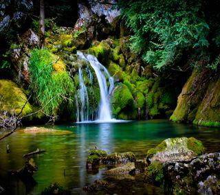 Обои на телефон водопад, рок, пещера, камни, дерево, вода, waterfall cove