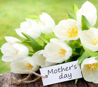 Обои на телефон тюльпаны, цветы, счастливые, матери, мама, день, весна, happy