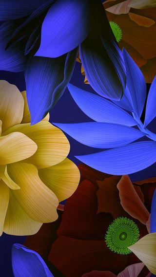 Обои на телефон цветные, хуавей, природа, листья, красочные, huawei