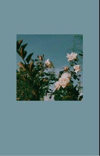Обои на телефон цвет морской волны, эстетические, синие, розы, милые, aesthetic blue roses