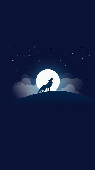 Обои на телефон волк, ночь, небо, луна, звезды