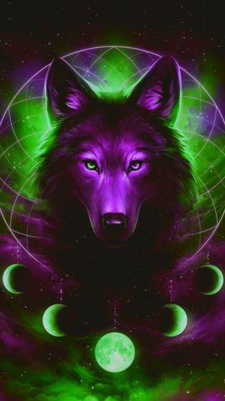Обои на телефон тень, черные, северный, огни, галактика, волк, galaxy wolf