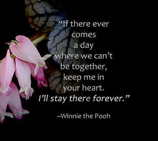 Обои на телефон твой, пух, сердце, поговорка, навсегда, любовь, вместе, love, in your heart