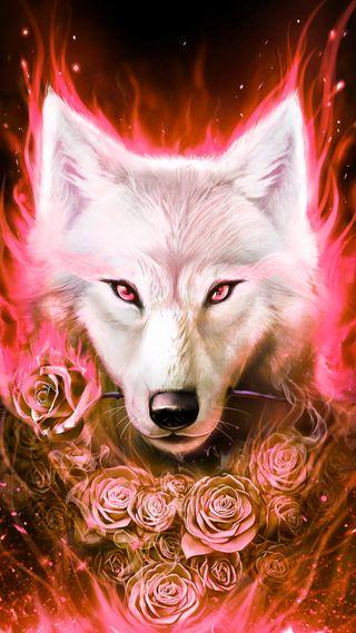 Обои на телефон фантазия, розы, розовые, животные, волк, белые, wolf and roses