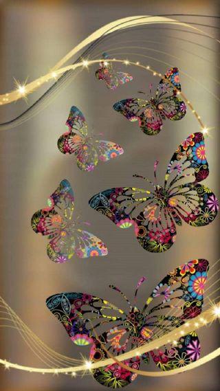 Обои на телефон фотографии, ультра, бабочки
