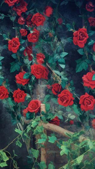Обои на телефон рисунки, розы, любовь, красые, love