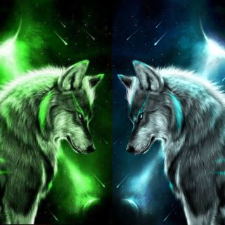 Обои на телефон стена, волк, wolf wall 2