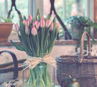 Обои на телефон тюльпаны, ваза, букет