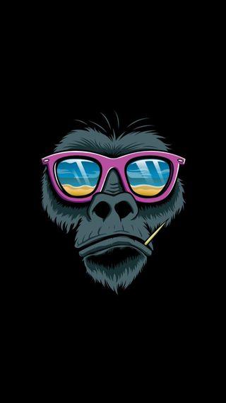 Обои на телефон обезьяны, крутые, арт, art, 1080p