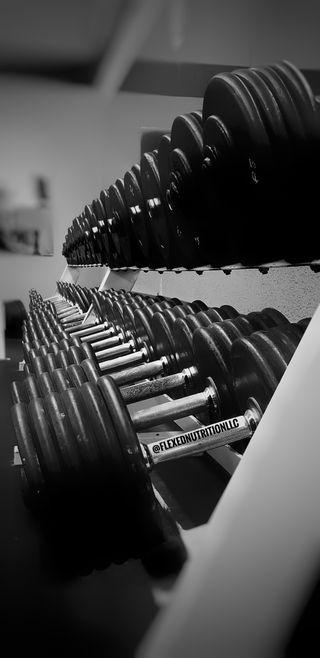 Обои на телефон тренировка, спортзал, мускул, бодибилдинг, бег, weight, sweat, gym weights, dumbell, cardio, bodybuilder