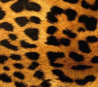 Обои на телефон stitches, абстрактные, черные, цветные, золотые, леопард