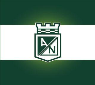Обои на телефон atltico nacional, atletico nacional, футбол, колумбия