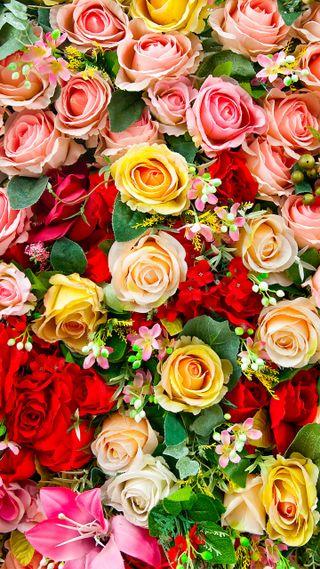 Обои на телефон еда, розы, природа, букет
