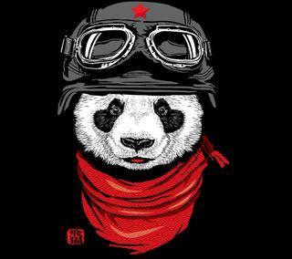 Обои на телефон всадник, панда