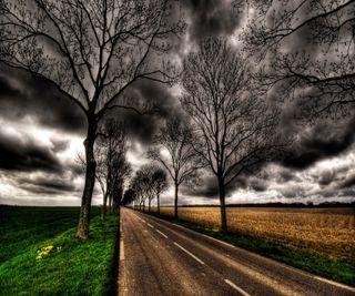 Обои на телефон природа, облака, небо, дорога, деревья, dry