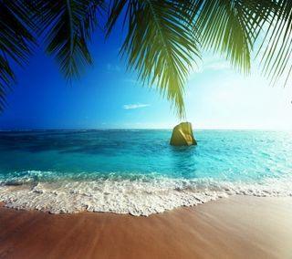 Обои на телефон тропические, рай, пляж, песок, пальмы, море, лето, берег