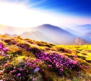Обои на телефон небеса, цветы, цветные, рай, прекрасные, новый, небо, горы, hd, 2014