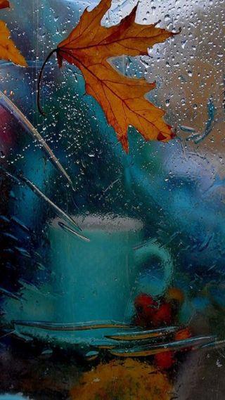 Обои на телефон чашка, осень, листья, дождь, cup