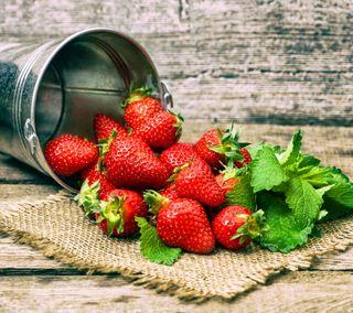 Обои на телефон ягоды, фрукты, красые, клубника