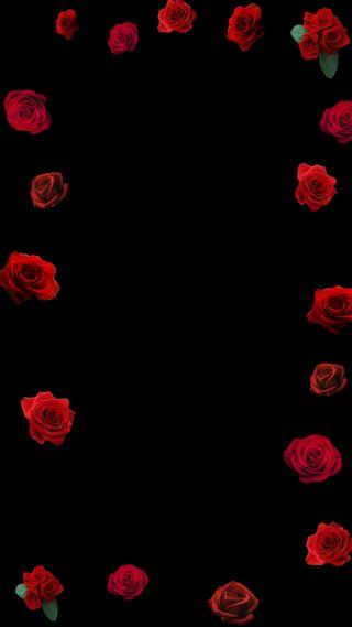Обои на телефон эпичные, черные, розы, любовь, крутые, красые, классные, rose love, corner