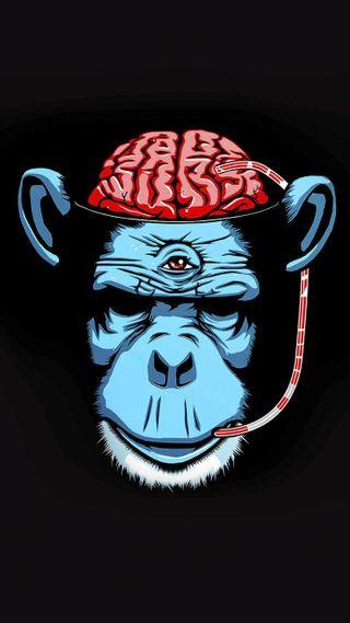 Обои на телефон рисунок, обезьяны, мозг, дизайн