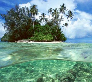 Обои на телефон подводные, природа, океан, жизнь, ocean life, iceland