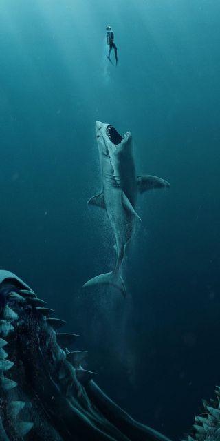 Обои на телефон акула, небо, море, забавные, дори, дельфины, zuber, humour