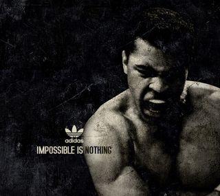 Обои на телефон великий, спорт, бокс, бой, боец, али, адидас, muhammed, boxer, adidas