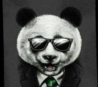 Обои на телефон панда, крутые, panda  cool guard, atef, abdo