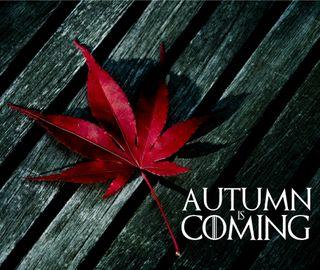 Обои на телефон старк, осень, игра, tiddmisao, lanister, got, autumn is coming
