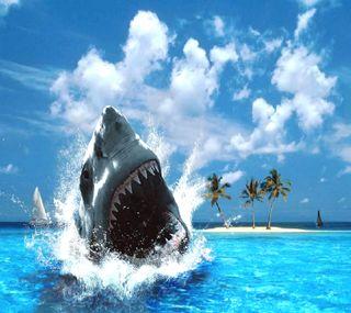 Обои на телефон акула, ------------
