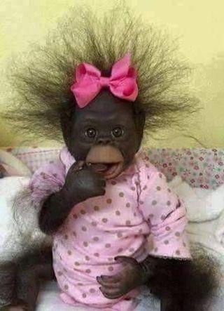 Обои на телефон обезьяны, малыш, девушки, baby monkey, baby girl