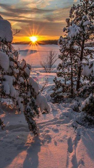 Обои на телефон солнце, снег, зима
