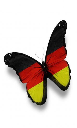Обои на телефон немецкие, яркие, черные, флаг, крылья, желтые, белые, бабочки, german flag, german butterfly, black yellow