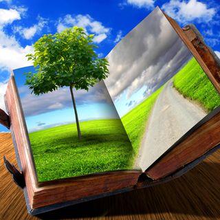 Обои на телефон книга, жизнь, xq, bu, book of life
