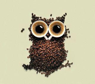 Обои на телефон сова, кофе, зерна, owl of coffee beans