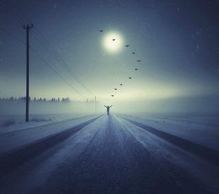 Обои на телефон туман, снег, птицы, поездка, одиночество, ночь, зима, далеко, бег, escape, away with birds