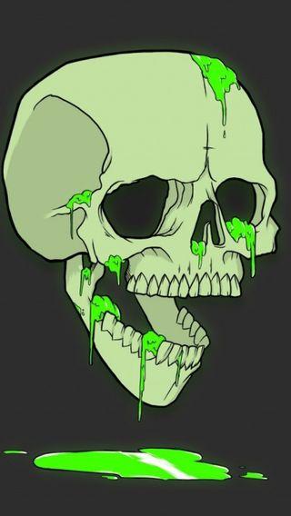 Обои на телефон юмор, череп, минимализм, кости, зеленые, арт